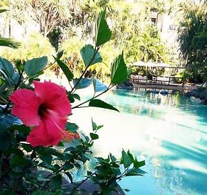 'LIFE IS A BEACH' - LUSH RESORT RENTAL Miami Gold Coast South Preview
