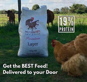 Mother Hen Premium Layer Chook Food - 19% Protein