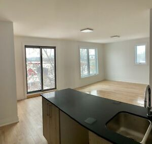 May 1 - 3 Bedroom Furnished Condo - Steps to Carleton  Universit