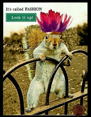 Pink Feather Headpiece (BIRTHDAY Squirrel Feather Headpiece Pink Purple HUMOROUS Birthday Greeting Card)