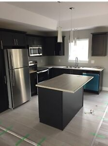 1 year old duplex for rent in Dieppe