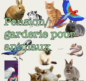 Pension/garderie pour animaux(chat,rongeur, reptile,oiseau...)