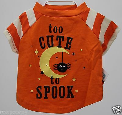 Halloween Martha Stewart Orange & White Too Cute to Spook Pet Dog Shirt Medium
