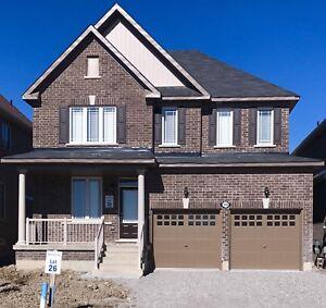 Spacious New house for lease in lefroy