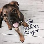 The Fashion Ranger
