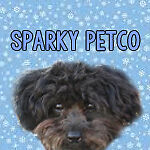 SparkyPetCo