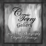 C.Terry Gallery