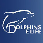 Dolphins_eLife