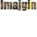 Imajgin