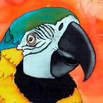 Parrot Bay Sales