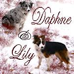 DaphneandLily