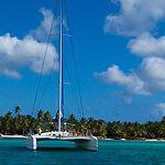 Kwite Caribbean