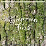 Evergreen Finds