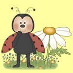 LadybugsandDaisies