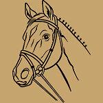 e-der-pferdeshop