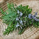 rosemary-and-thyme-collection
