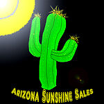 Arizona Sunshine Sales