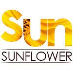 Buy From_sun*sunflower