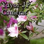 Yayoi-JP-Camera