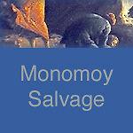 Monomoy Salvage