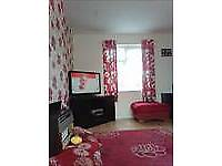 3 bed parlour house wv14 9ew