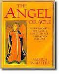 THE ANGEL ORACLE by AMBIKA WAUTERS Kitchener / Waterloo Kitchener Area image 1