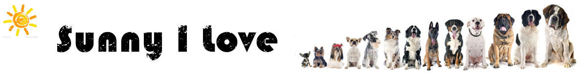 Service Dog Harness-Ding