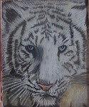 Tiger Cosmetics