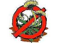 Garden Weed killing service