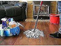 Domestic Cleaning * Carpet Cleaning from £20.00 * End of Tenancy Cleaning from £65.00