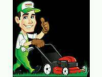 Ace Lawn/Grass Cutting and Strimming Service * Gardener * Lawnmowing*