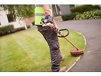 Cheap gardener looking for work.