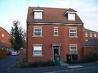 Double ensuite room available in professional house share in Tuffley ref 37ss-3