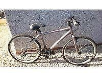 Ladies Cosmo Apollo bike 22 inch Light Weight Frame