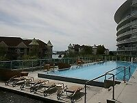 Luxurious One Bedroom Condo with Den and patio in Inner Harbour