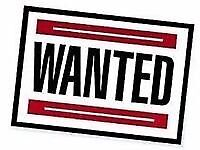 WANTED wallpaper and paint
