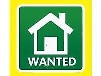 Bedsit-Annexe-Studio Flat wanted in Budleigh Salterton/East Budleigh area for single professional.