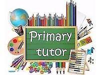 P6/7 Primary School Tutor