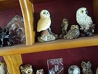 owl collection large variety of owls  if interested calllandline