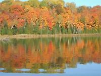 COME SEE THE FALL COLOURS- TH'SGIVING Rented-Booking for Xmas