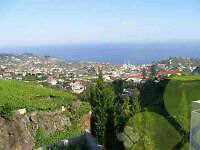 HOUSE FOR SALE IN MADEIRA