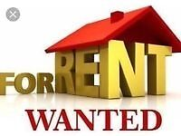 2-3 bedroom flat/house WANTED in Huntingdon.