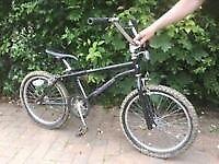 "BMX Protec Saskatoon kids childs bike bicycle 20"" wheels"