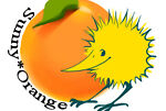 Sunny Orange Store