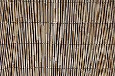 Bamboo Fence 8
