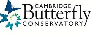 CAMBRIDGE BUTTERFLY Conservatory - Family Tickets Cambridge Kitchener Area image 2