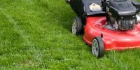 Edmonton  grass cutting from only $50 per lawn. front & back. in