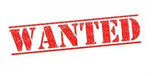 Wanted Chain Link Fencing