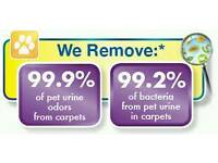 Dale carpet cleaning