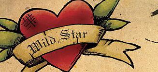 Wild Star Design